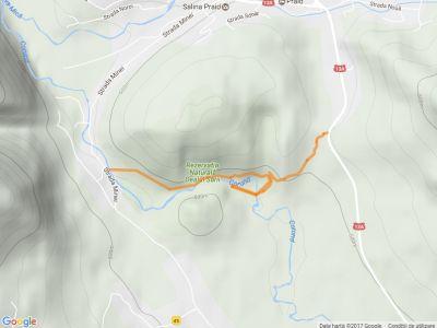 Muntele de Sare - Canionul de Sare
