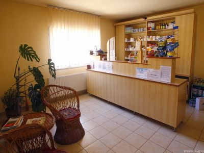 Pharmacy Oxalis